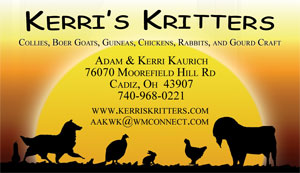 Kerri's Kritters Business Card