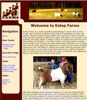 Boer Goats and Great Pyrenees For Sale