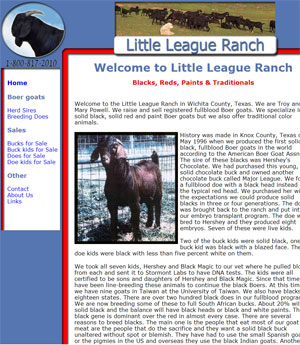 Black Boer Goats for Sale in Texas