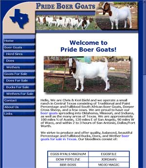 Boer Goats For Sale Texas